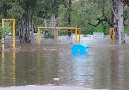 Lluvias y tormentas afectaron viviendas, arbolado y tendido eléctrico