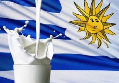 Exportaciones de lácteos crecen 7% en 2018