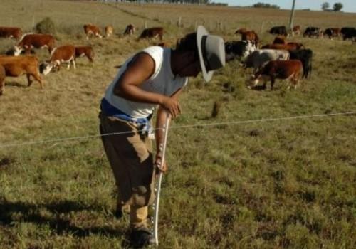 Cinco gremiales rurales se retiran de los Consejos de Salarios